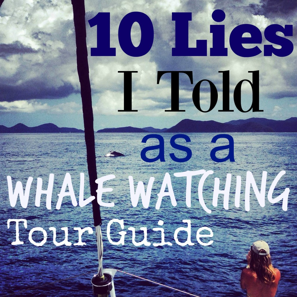 whalewatchlies
